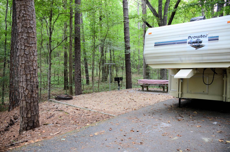 Campsite view.Payne Campground, campsite 56.