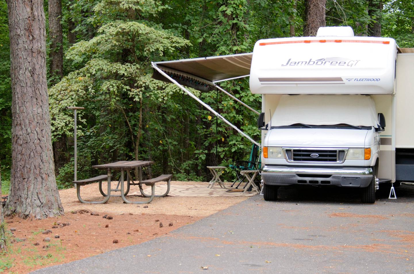 Awning-side clearance, campsite view.Payne Campground, campsite 60.