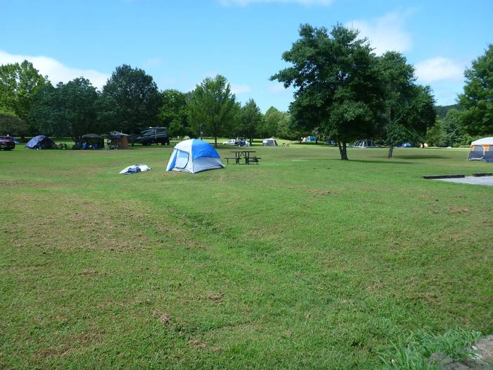 Tyler Bend Main Loop Site# 8-1 Site# 8, 35' back-in, tent pad 15' x 15'.  Parking area is wide enough to parking Rv & car side by side.