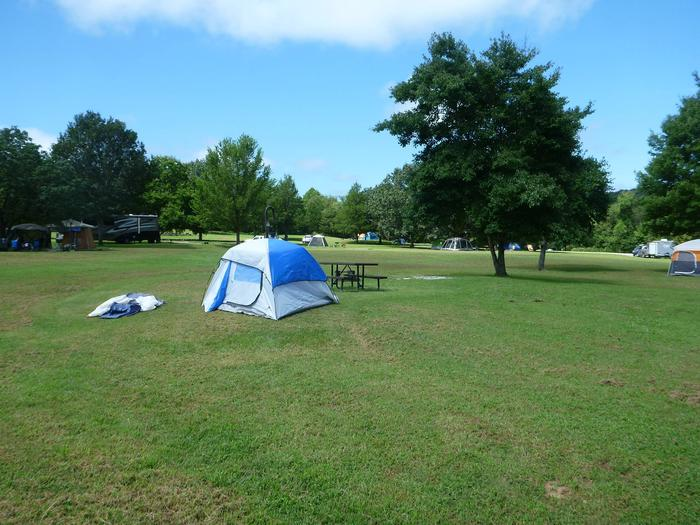 Tyler Bend Main Loop Site# 8-2 Site# 8, 35' back-in, tent pad 15' x 15'.  Parking area is wide enough to parking Rv & car side by side.