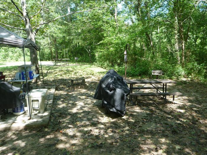 Tyler Bend Main Loop Site#9-3 Site#9, 54' back-in, tent pad 15' x'15', looking towards site #10.