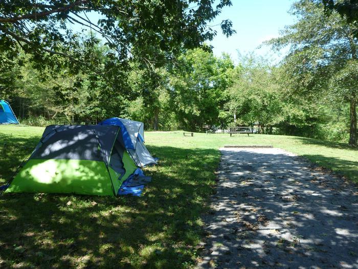 Tyler Bend Main Loop Site #20-3Site #20, 50' back-in, tent pad 15' x 15'.