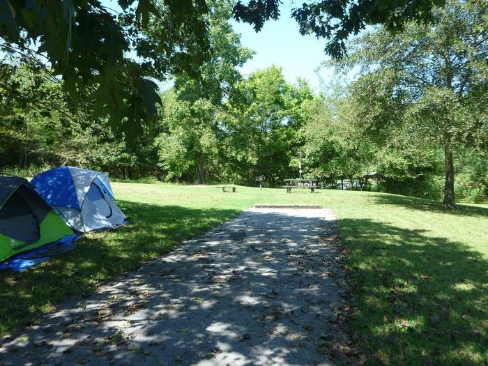 Tyler Bend Main Loop Site #20-4Site #20, 50' back-in, tent pad 15' x 15'.