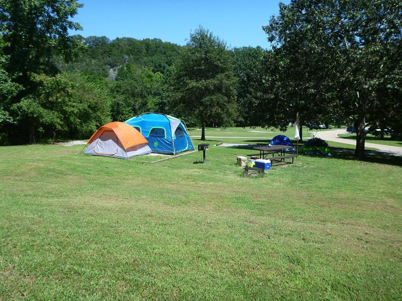 Tyler Bend Main Loop Site# 21-2Site #21, 56' back-in, tent pad 15' x 15'.