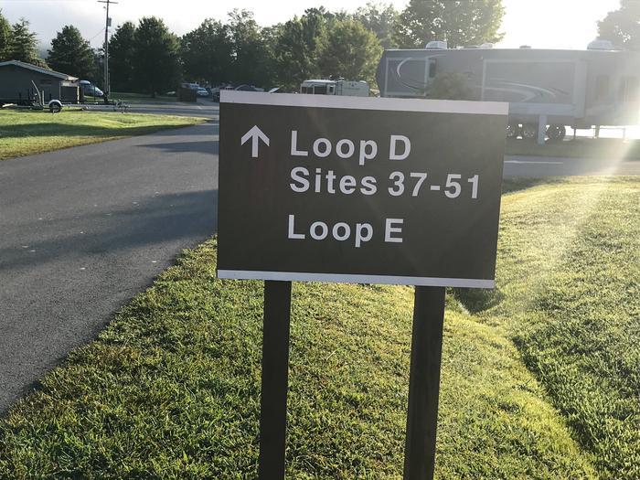 Loop D