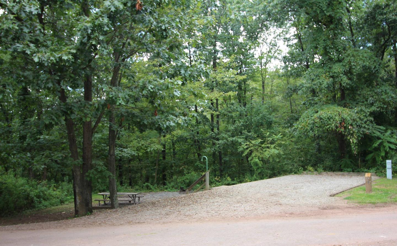 Campsite PictureSite 35