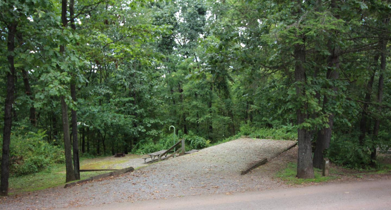 Campsite PictureSite 37