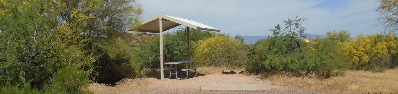 Campsite 5, Coati LoopWindy Hill Campground