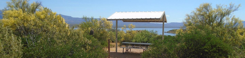 Campsite 13, Coati LoopWindy Hill Campground