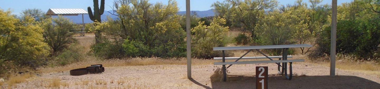 Campsite 21, Coati LoopWindy Hill Campground