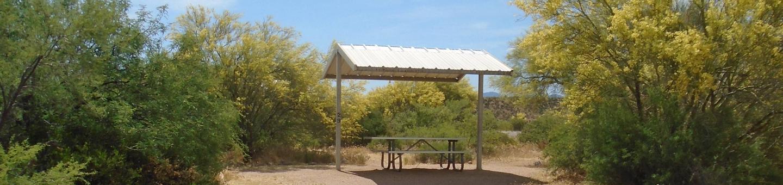 Campsite 29, Coati LoopWindy Hill Campground