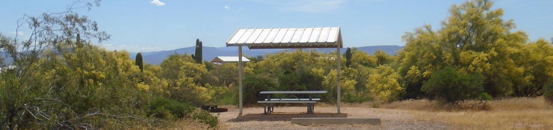 Campsite 33, Coati LoopWindy Hill Campground