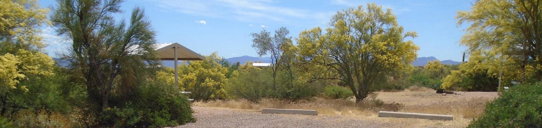 Campsite 35, Coati LoopWindy Hill Campground