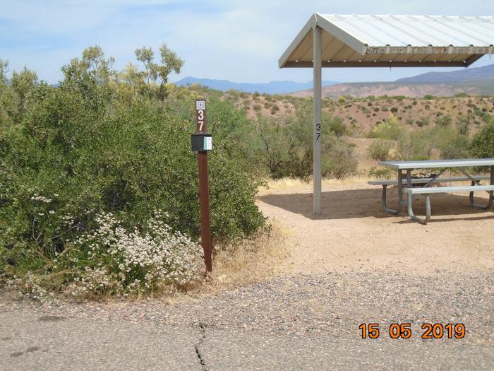 Campsite 37Windy Hill Campground