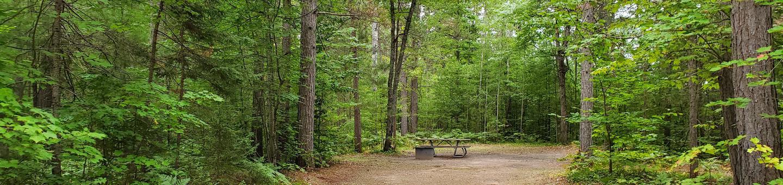 Island Lake site #09 full campsite view