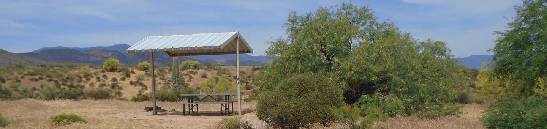 Campsite 41, Coati LoopWindy Hill Campground