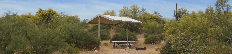 Campsite 47, Coati LoopWindy Hill Campground