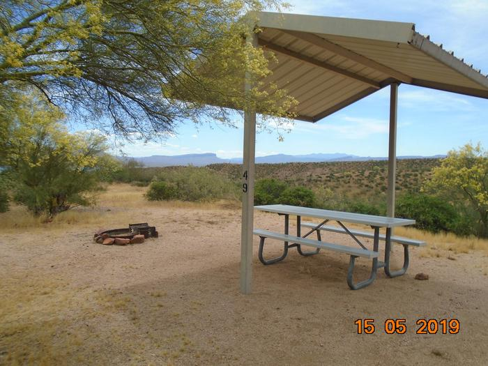 Campsite 49 OverviewWindy Hill Campground