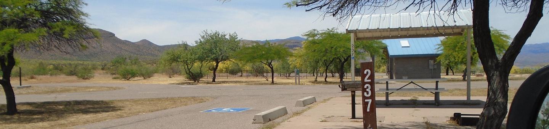 Campsite 237, Chipmunk LoopWindy Hill Campground
