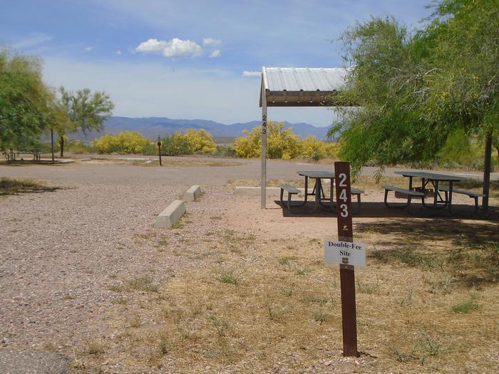 Campsite 243, Chipmunk LoopWindy Hill Campground