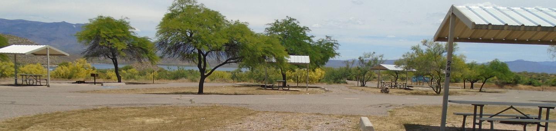 Campsite 249, Chipmunk LoopWindy Hill Campground