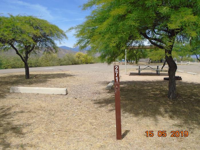 Campsite 271 Windy Hill Campground