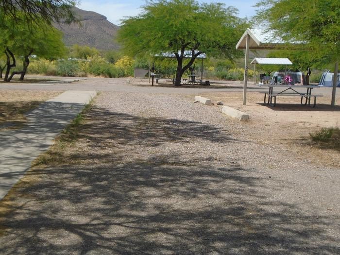 Campsite 305, Coyote LoopWindy Hill Campground