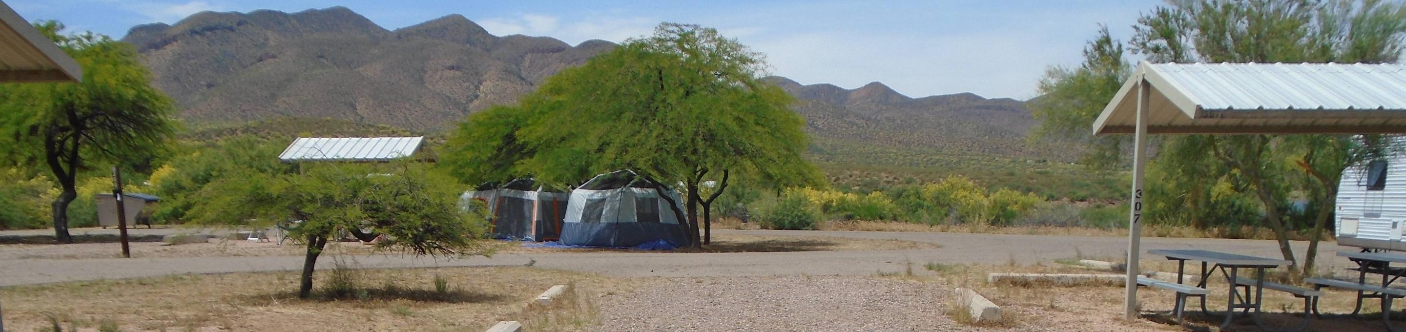 Campsite 307, Coyote LoopWindy Hill Campground