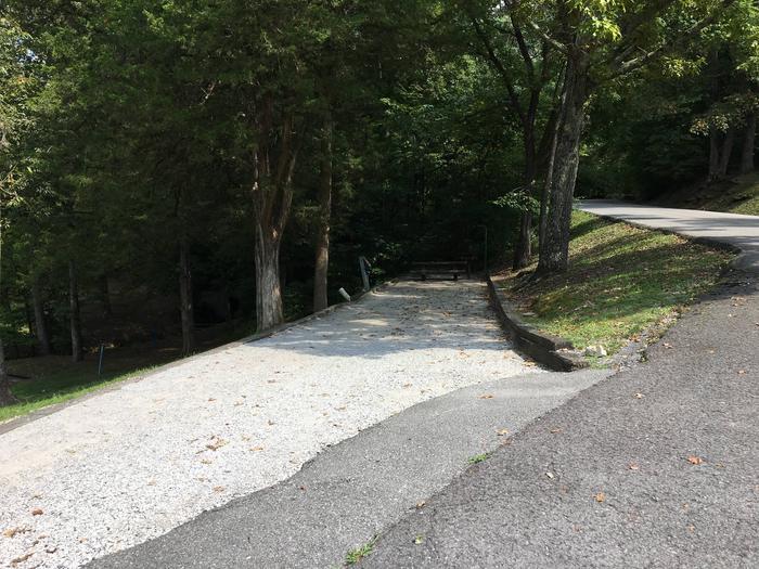 OBEY RIVER PARK SITE #59 ROAD VIEWOBEY RIVER PARK SITE #59