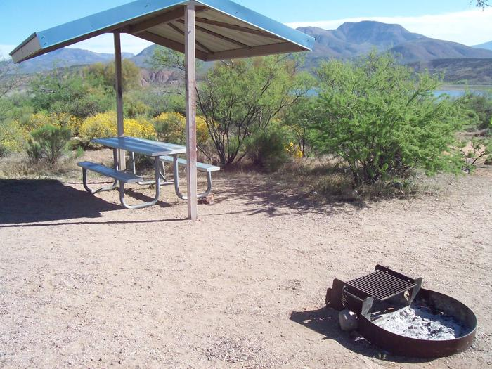 Campsite 51, Buckhorn Loop with a picnic table, fire ring, shade structure, and parking.