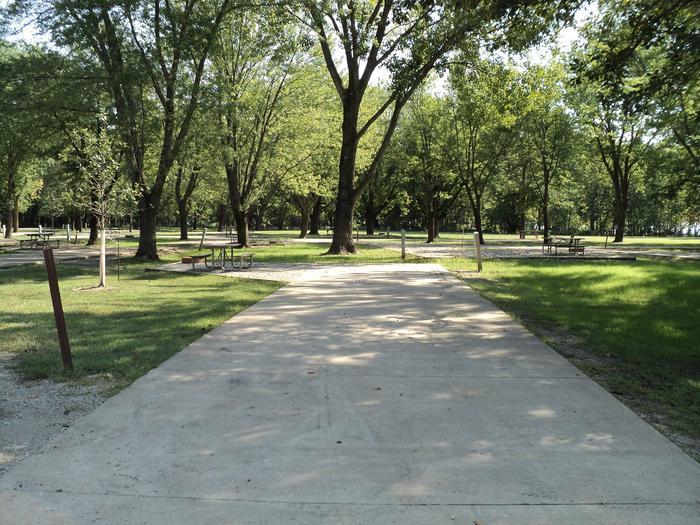 Site 50Shady Creek Recreation Area #50