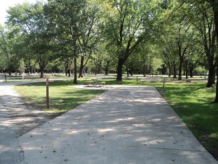 Site 51Shady Creek Recreation Area #51