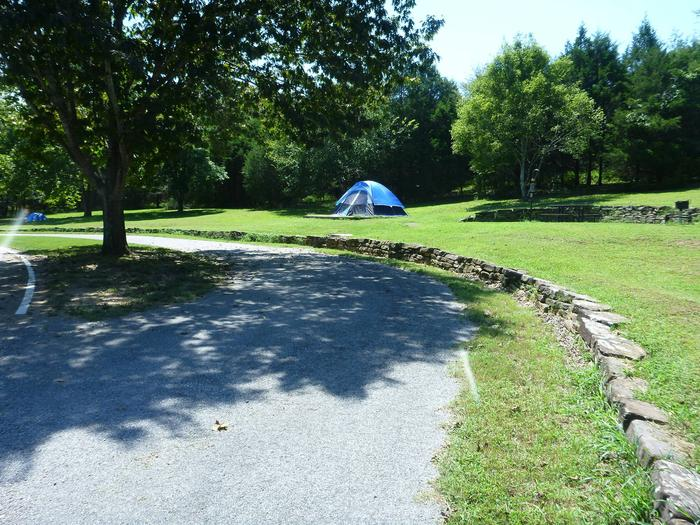 Tyler Bend Main Loop Site# 22-3Site #22 is a pull-through site that is 105', tent pad 15' x 15'