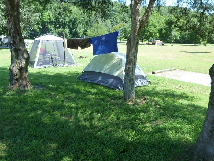 Tyler Bend Main Loop Site #23-2Site# 23, 50' back-in, tent pad 15' x 15'