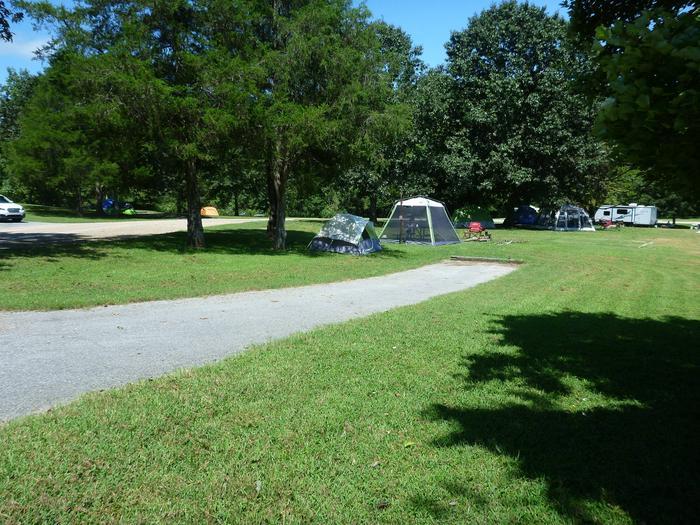 Tyler Bend Main Loop Site #23-3Site# 23, 50' back-in, tent pad 15' x 15'