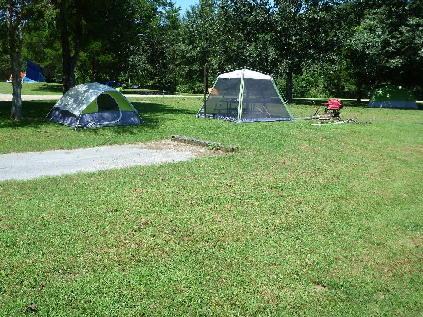 Tyler Bend Main Loop Site #23Site# 23, 50' back-in, tent pad 15' x 15'