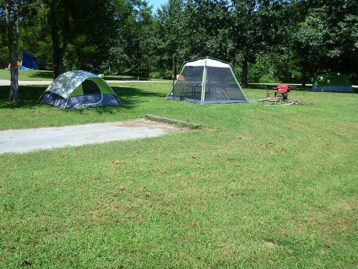 Tyler Bend Main Loop Site #23Site# 23, 50' back-in, tent pad 15' x 15'
