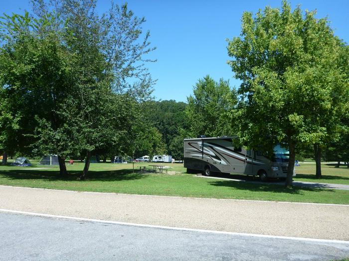 Tyler Bend Main Loop Site 25-3Site #25, 67' back-in, tent pad 15' x 15'.