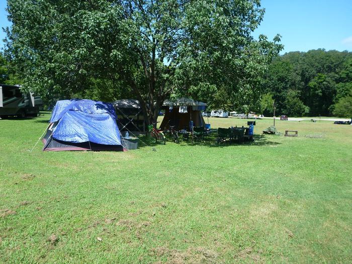 Tyler Bend Main Loop Site# 26-2Site #26, 53' back-in, tent pad 15' x 15'