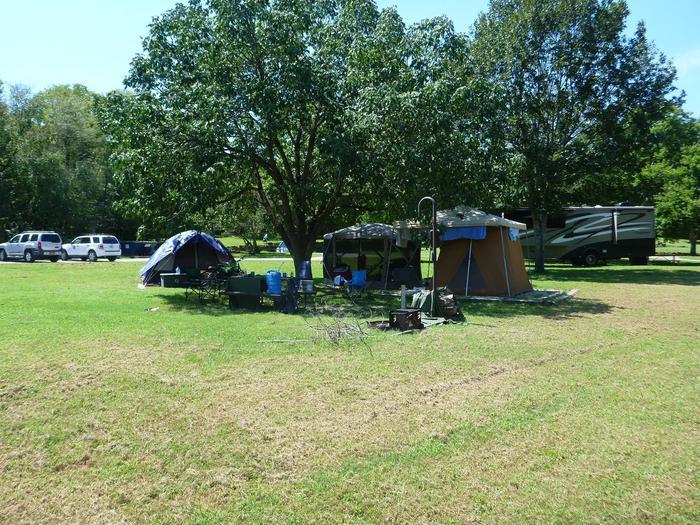 Tyler Bend Main Loop Site# 26-4Site #26, 53' back-in, tent pad 15' x 15'