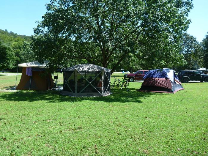 Tyler Bend Main Loop Site# 26-6Site #26, 53' back-in, tent pad 15' x 15'