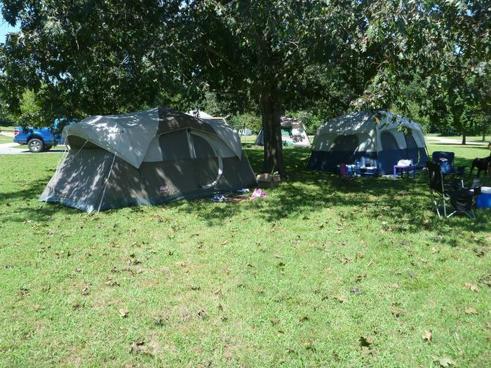 Tyler Bend Main Loop Site# 28-1Site# 28, 70' back-in, tent pad 15' x 15'