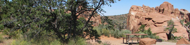 Site 19Pull-Through Site