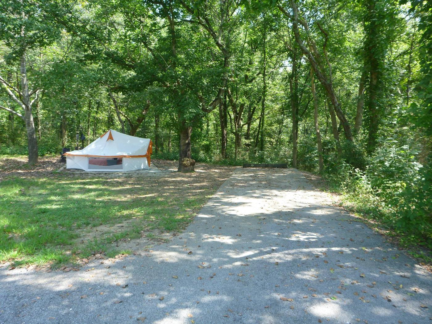 "Tyler Bend Main Loop Site#9-7 Site#9, 54' back-in, tent pad 15' x'15'.( on Right side of picture) Site #10, 43"" back-in, tent pad 15' x 15' (on left side of picture)"