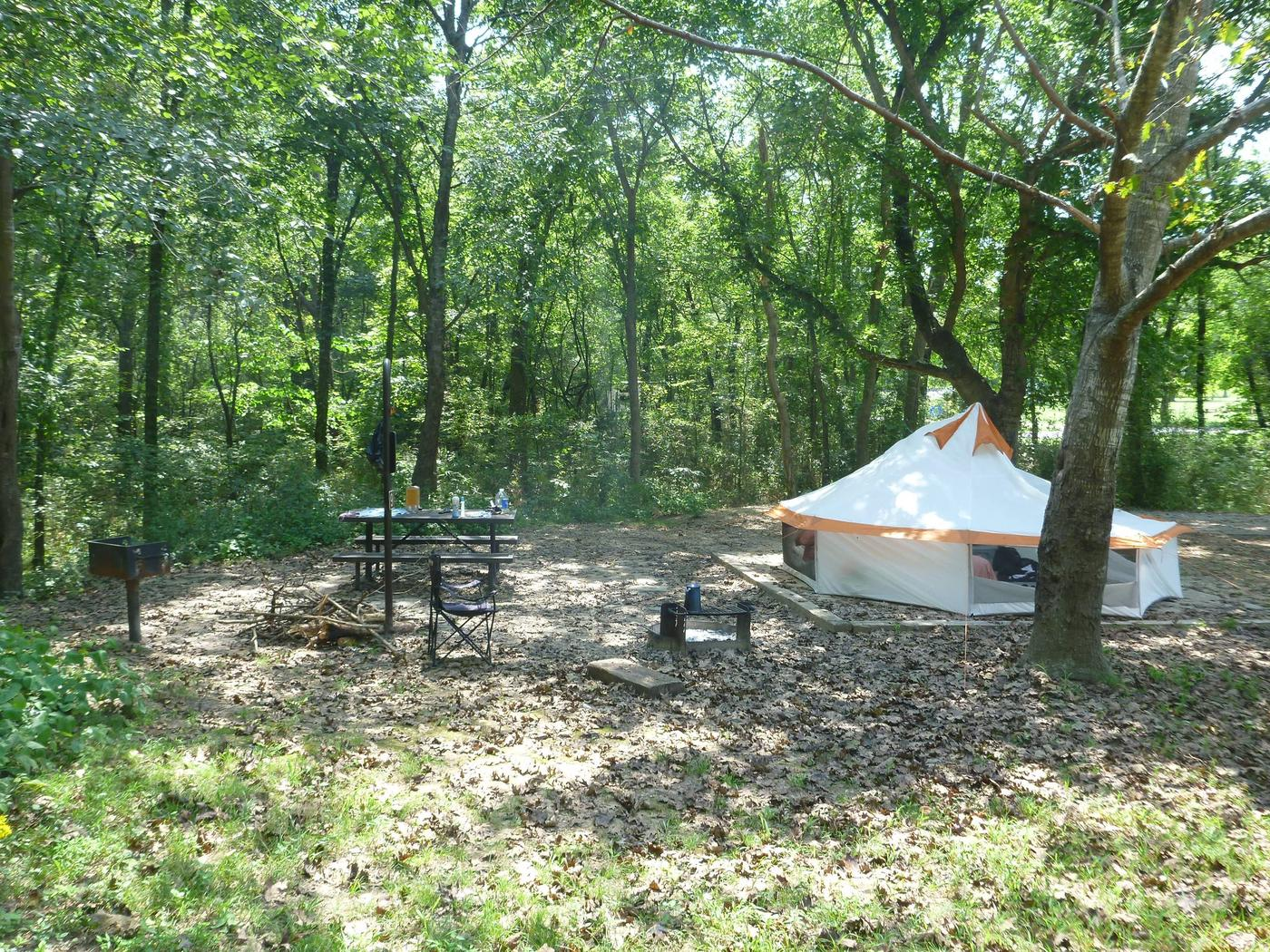 Tyler Bend Main Loop Site#9 Site#9, 54' back-in, tent pad 15' x'15'.