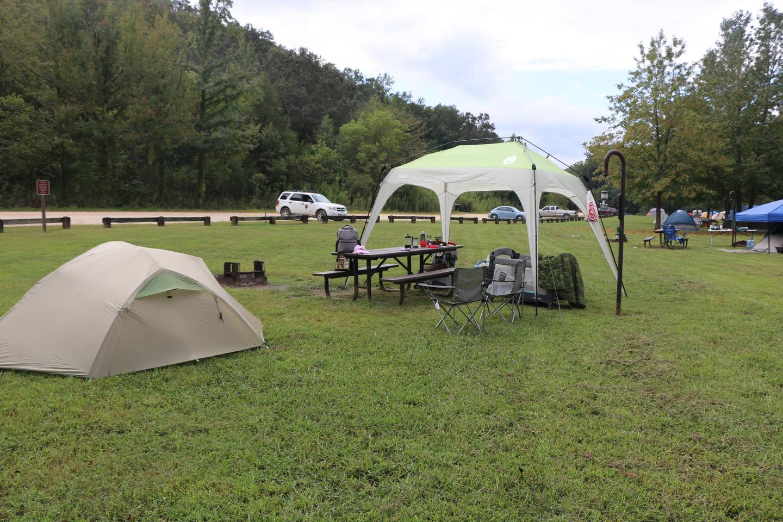 Steel Creek Camp Site #1 (photo 2)Steel Creek Camp Site #1