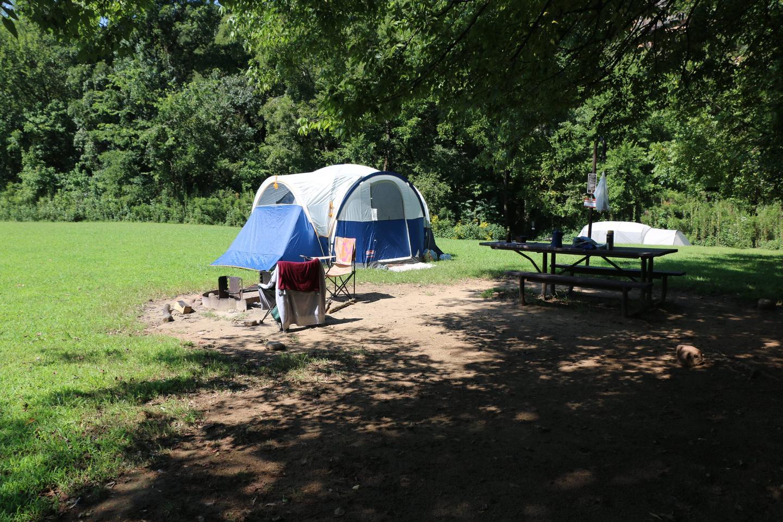 Steel Creek Camp Site #2 (photo 5)Steel Creek Camp Site #2