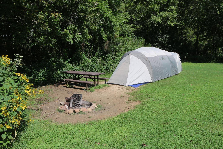 Steel Creek Camp Site #4 (photo 3)Steel Creek Camp Site #4