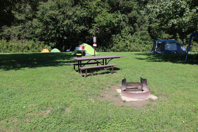 Steel Creek Camp Site #7 (photo 4)Steel Creek Camp Site #7