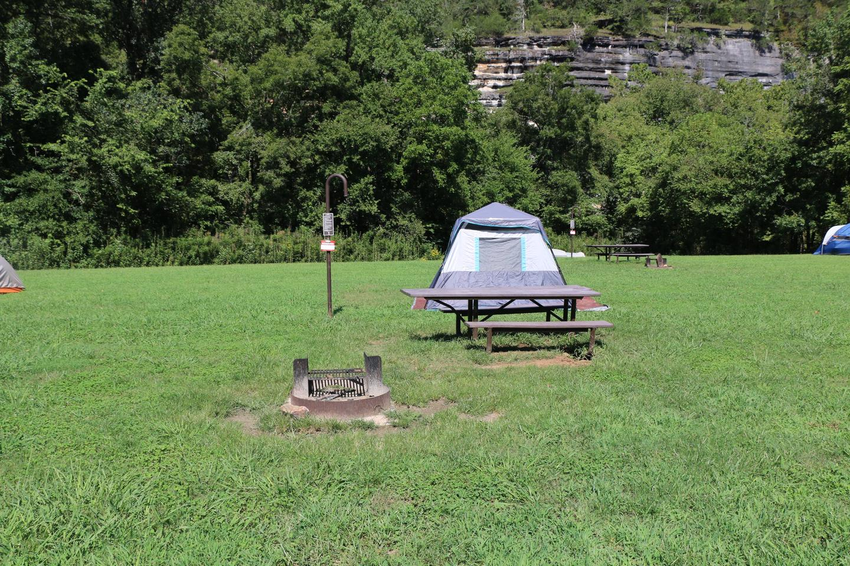 Steel Creek Camp Site #5 (photo 3)Steel Creek Camp Site #5